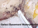 portfolio before 1507c51cd21bd1 160x120 Before & After Select Basement Waterproofing