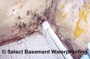 Portfolio Before 1507c51cd21bd1 160x120 Basement Waterproofing Select  Basement Waterproofing
