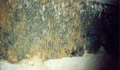 scan0033507d538a64ce1 170x100 The Bad & Ugly Select Basement Waterproofing