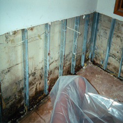mold remediation removal select basement waterproofing new jersey