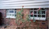 window1507c580a61761 170x100 Glass Block Leak Proof Windows Select Basement Waterproofing