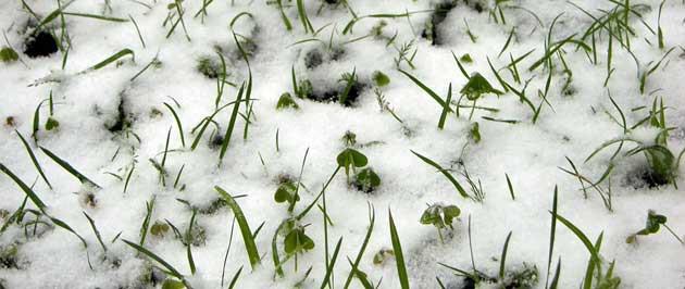 This Winter May Bring Foundation Cracks