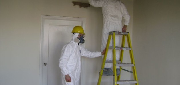 A Few Facts about Effective Mold Remediation in Morganville NJ