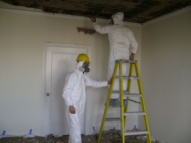 mold remediation in morganville nj april 17 2016 mold remediation