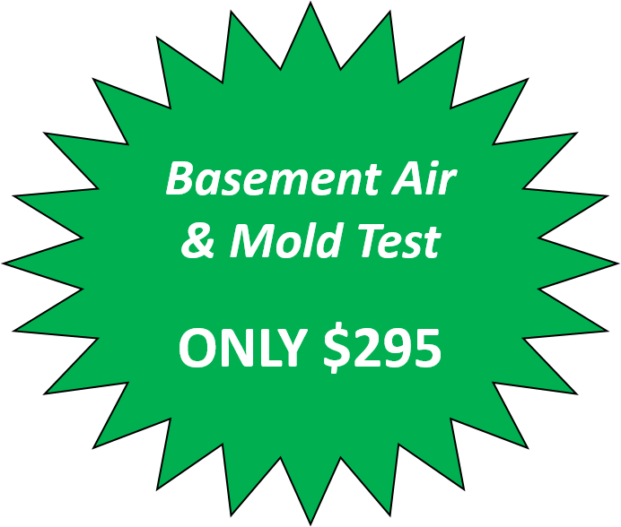 basement air and mold test only $295